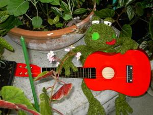 Bergamote_toca_la_guitara